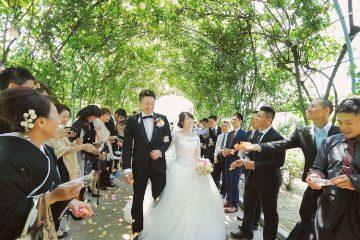 ウェディングレポート「バラ園での結婚式」